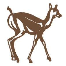 Baby Deer Decal
