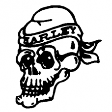 Harley Skull car decal