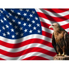 American USA Flag With Eagle Wall Sticker