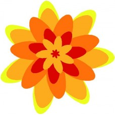 Color Flower 9
